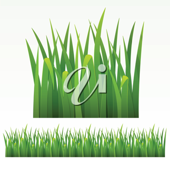 Royalty Free Clipart Image of Grasses