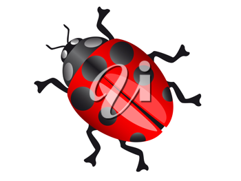 Royalty Free Clipart Image of a LadyBird