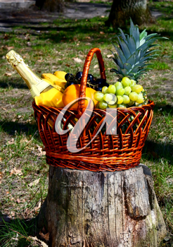 basket with fruit on nature