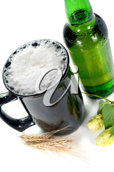 beer and hop isolated on white background