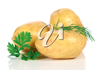 fresh raw potatoes isolated on white background