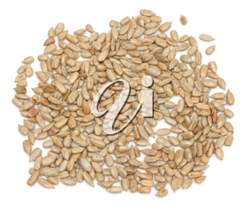 fresh sunflower seeds isolated on a white background