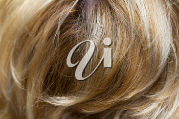 background of the hair
