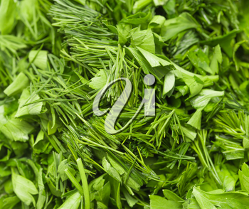 background of chopped fennel with parsley. macro