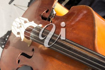 Music Cello