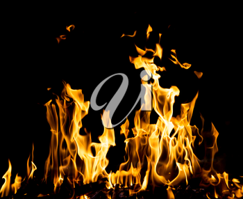 abstract background. fire flames on a black background