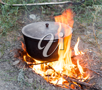 cauldron on the fire on the nature