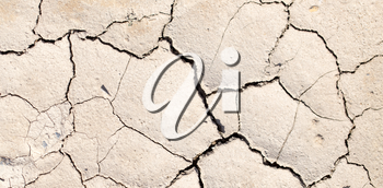 cracked earth as a background. texture