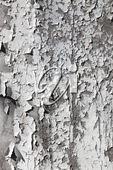 old cracked paint on a wall as a background