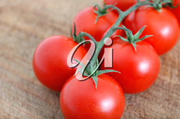 Royalty Free Photo of Tomatoes