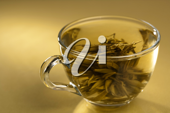 Royalty Free Photo of a Cup of Green Tea