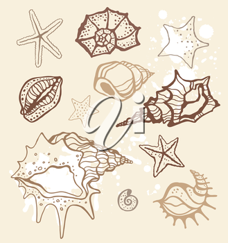 Royalty Free Clipart Image of a Seashell Background