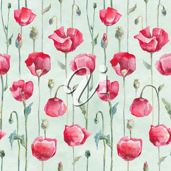 Hand Drawn Watercolor Floral pattern. Flower seamless background