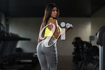 Sexy Latina Woman Working Out Biceps In Fitness Center - Dumbbell Concentration Curls