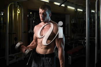 Muscular Man Doing Heavy Weight Exercise For Biceps With Dumbbells In Modern Fitness Center Gym