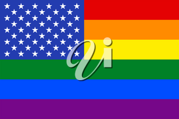 United States Gay vector flag or LGBT