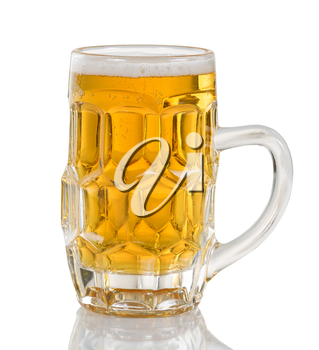 Golden colored beer in glass stein. Isolated on white with reflection.
