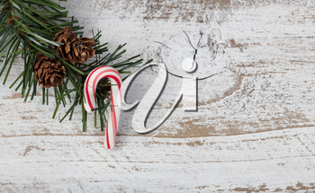 Christmas single candy cane ornament hanging in rough fir tree branch on rustic white wooden background