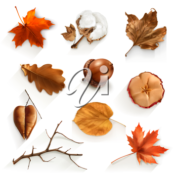 Autumn scrap set, vector elements