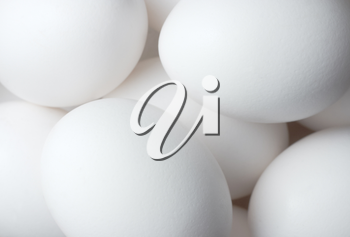 Eggs solid background (easter theme)