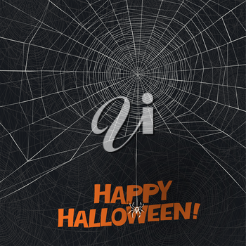 Halloween holiday card design. Spider says Happy Halloween. Spider web vector background.
