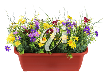 Floral bouquet from artificial wild flowers in a flowerpot isolated on white background. Closeup.