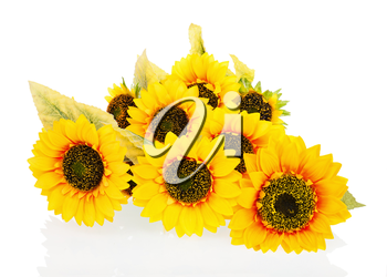 Composition from bright artificial sunflowers isolated on white background. Closeup.