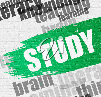 Business Education Concept: Study - on Brick Wall with Wordcloud Around. Modern Illustration. Study on White Wall Background with Wordcloud Around It.