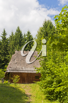 Old traditional wooden house with the thatched roof in a forest (Ukraine).
