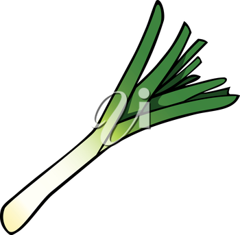 Royalty Free Clipart Image of a Leek