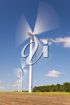 A farm of wind turbines or windmills providing alternative sustainable green energy, situated in a field of sinflowers