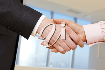 Close-up of business handshake of two businesspeople