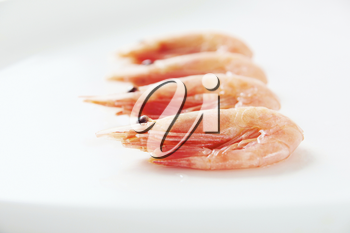 Image of tasty shrimps lying in row