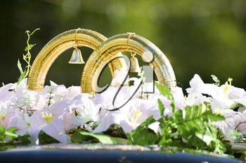 Close-up of big wedding golden rings with bells by white flowers on car roof