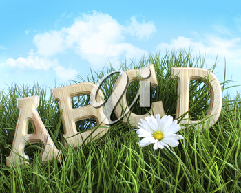 Royalty Free Photo of ABCD Letters in the Grass With a Daisy in Front