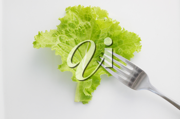 Lettuce with a fork on a plate