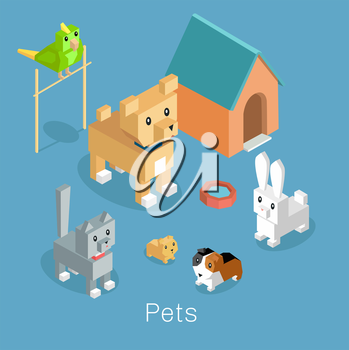 Pets set icon isometric 3d design. Pet and dog, dog and cat, animal cat, group of pets, puppy animal, kitten character, nature domestic pets, fauna hamster parrot and rabbit, guinea pig illustration