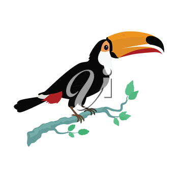 Toucan vector. Animals of rainy Amazonian forests in flat design. Fauna of South America. Wild life in tropics concept for posters, childrens books illustrating. Toucan on branch isolated on white.