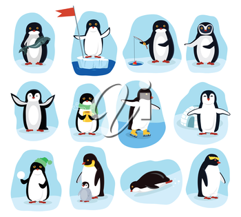 Penguins daily activities posters set. Fishing, medical aid, drinking coffee, nursering, playing. Funny polar winter birds banners greeting cards. Cartoon character wild penguin in flat style. Vector