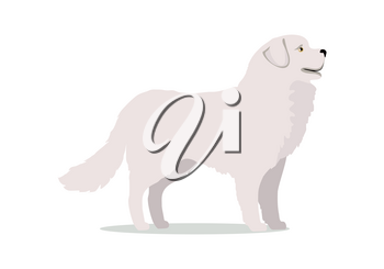 White labrador in stand on white background. Dog icon or logo element. Vector illustration in flat style. Labrador retriever design. Cartoon dog character, pet animal.