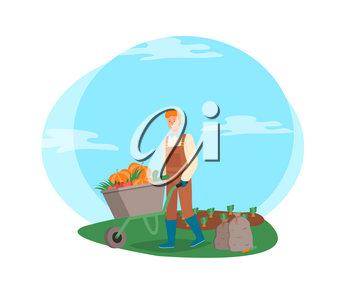 Farming man pushing wheelbarrow vector, male working on harvesting season, farmer on plantation of carrots, bags with ripe fruits and vegetables flat style