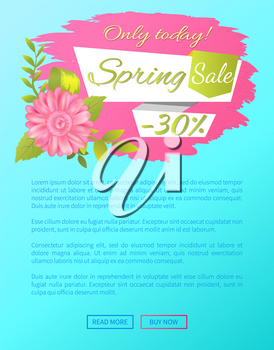 Spring sale only today 30 off web poster with online push buttons and pink daisy flower on sticker, vector springtime advertisement poster, info sales