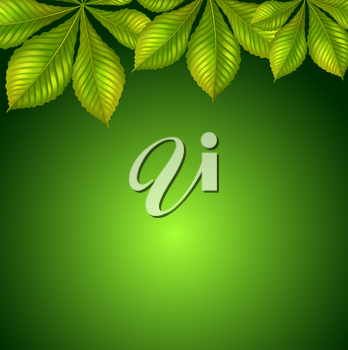 Illustration of a green background