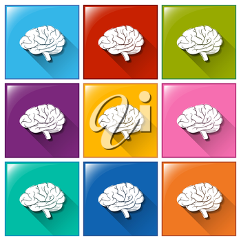 Buttons with brain on a white background