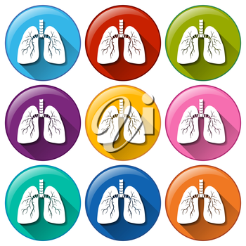 Buttons with lung organ on a white background