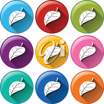 Illustration of the round icons with leaves on a white background