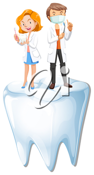 Dentists and tooth model illustration