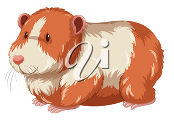 Furry hamster with happy face illustration