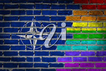 Dark brick wall texture - coutry flag and rainbow flag painted on wall - NATO
