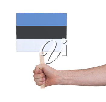 Hand holding small card, isolated on white - Flag of Estonia